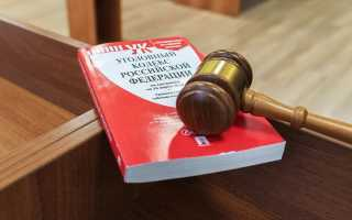 Апелляционное определение по уголовному делу образец