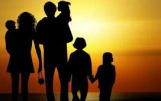Билеты в цирк многодетным семьям