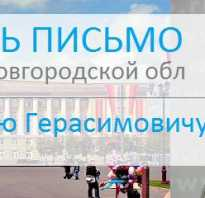 Написать письмо губернатору новгородской области митину