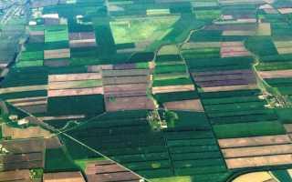 Как купить земельную долю сельхозназначения